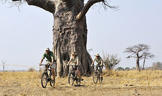Luxury South Luangwa Safaris - Activities at Tafika Camp