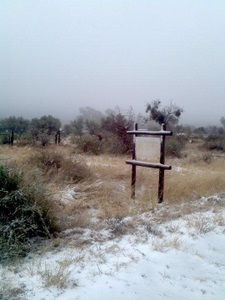 Snow in Namibia! - Luxury Namibia Safaris