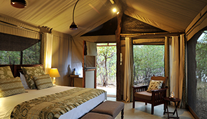 Luxury Zimbabwe Safaris - Changa Safari Camp Rooms