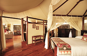 Luxury Lower Zambezi Safaris - Anabezi Tented Camp Room