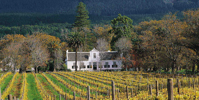Buitenverwachting Estate, Cape Town - White Africans | Southern African Safaris | Classic Africa