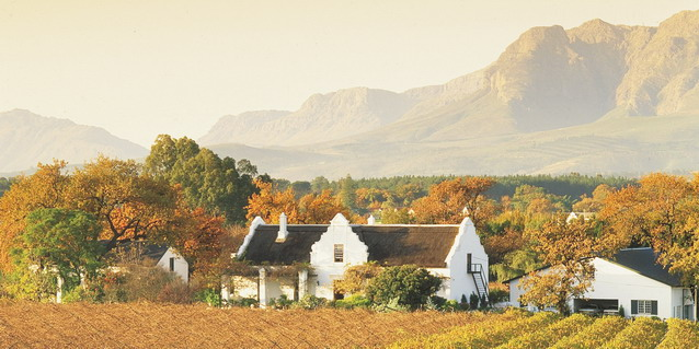Cape Winelands - Best Time to Travel - South Africa, the Country | Luxury African Safari Tours | Classic Africa