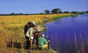 kwando chobe park luxury safari