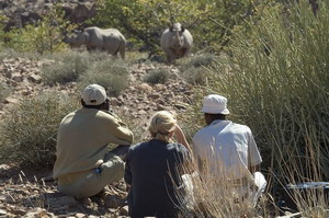 desert rhino camp namibia luxury safaris