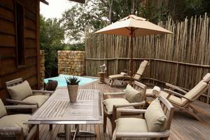tsala treetops lodge south africa luxury safaris