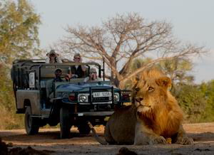 chiawa camp zambia luxury safaris